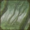 harennaforest.png