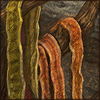 snakeskincave.png