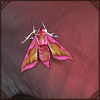 smallelephanthawkmoth.png