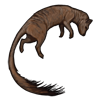 carcass_slendermongoose.png